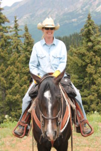 Equine Therapy Hippotherapy